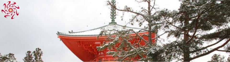 霊気浴三昧!世界遺産高野山・熊野三社巡りと伊勢参拝の旅 3泊4日